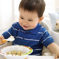 Introducing Solid Food