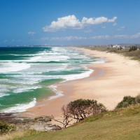 Little Rays of Sunshine... The Sunshine Coast