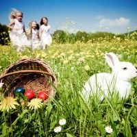 We're going on an Easter hunt …..