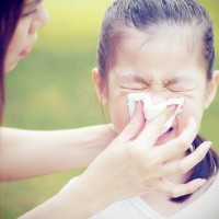 Germs…..waging the war