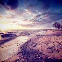Experience Western Australia