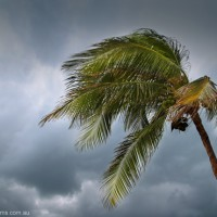 Protect your home this storm season