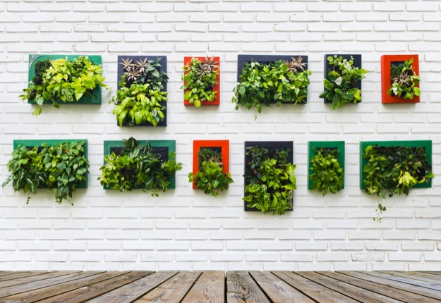 Creating a diy vertical garden from household items for Diy vertical garden wall