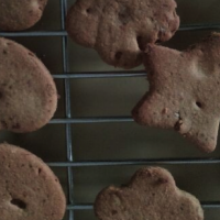 Healthy tiny teddies (shapes) biscuits