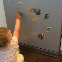 Homemade fridge magnets