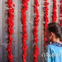 5 FREE things to do in Canberra this school holidays