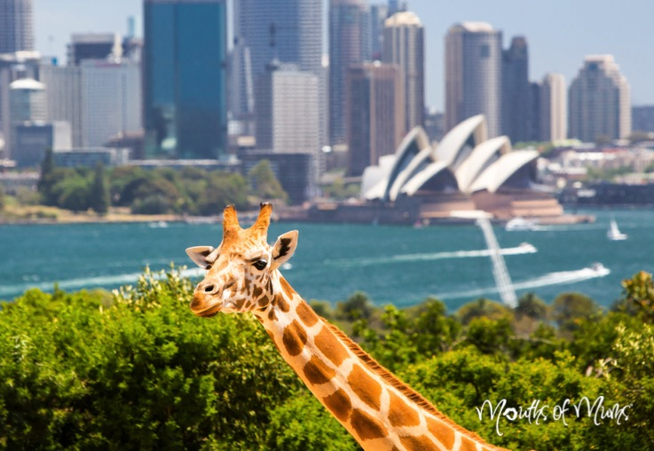 5 things to do this school holidays in Sydney