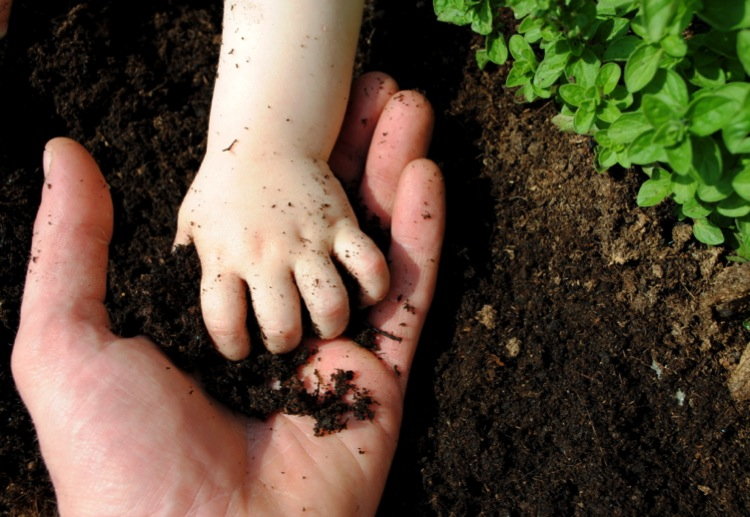 Get out Your Green Thumbs: 10 Tips to Get Your Kids into Gardening