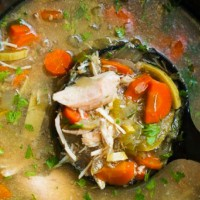 The best ever chicken and vegetable soup in your slow cooker