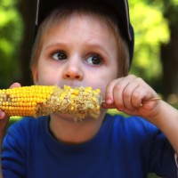 How to make the kids dinosaur corn cob holders!