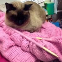 Mum's blanket of love