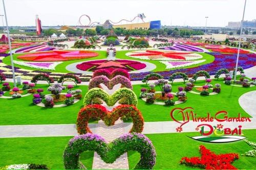 visit-dubai-feature_miracle-garden_1
