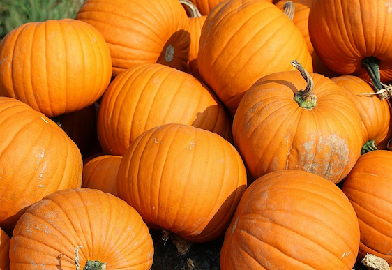 How to get glowing skin with a DIY pumpkin face peel