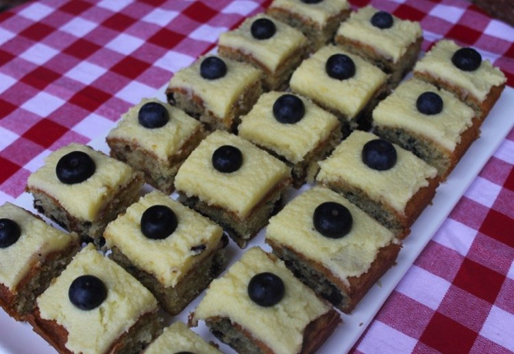 Blueberry and Walnut Squares