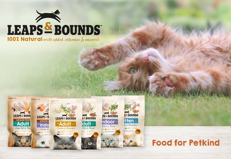 Leaps & Bounds Grain Free Ocean Fish and Thyme Adult Cat Food