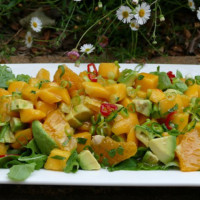 Summer Mango, Avocado and Orange Salad