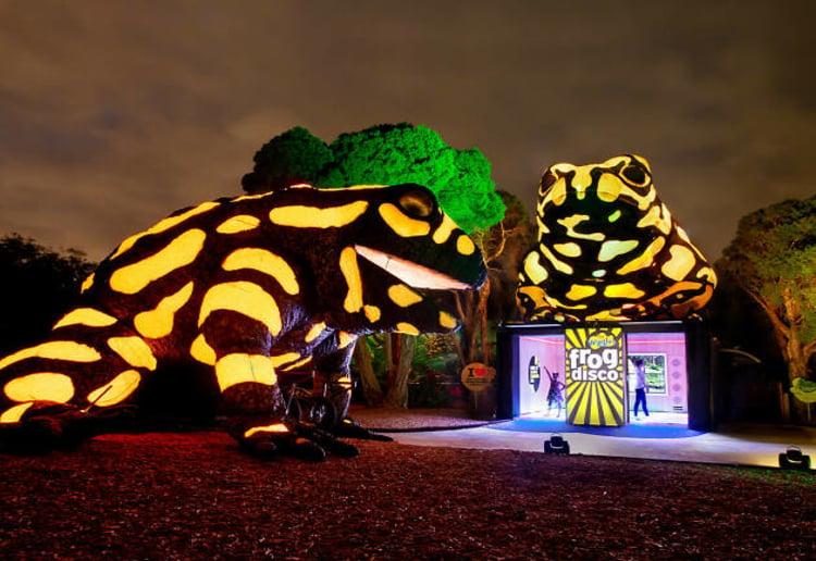 Melbourne Zoo's Neon Playground