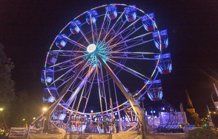 Bondi Winter Magic - Ferris Wheel