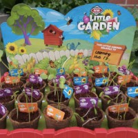 So Cute! We Just Cannot Wait For Coles Little Garden