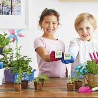 It's Official! Woolworths Discovery Garden Is Coming Soon